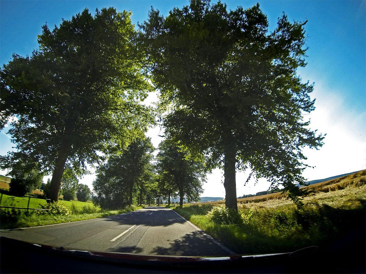 Alleentour – Niedersachsen hat auch was zu bieten
